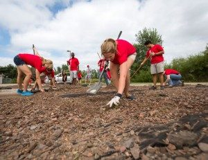 Students volunteering in this year's Community Service Day by pulling weeds